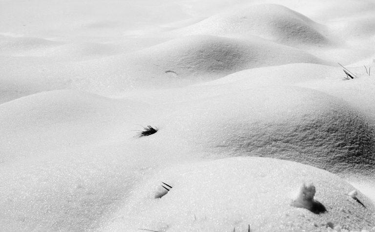 Carol Letanneur Photographe_ Série No Name_ Nu féminin en noir et blanc